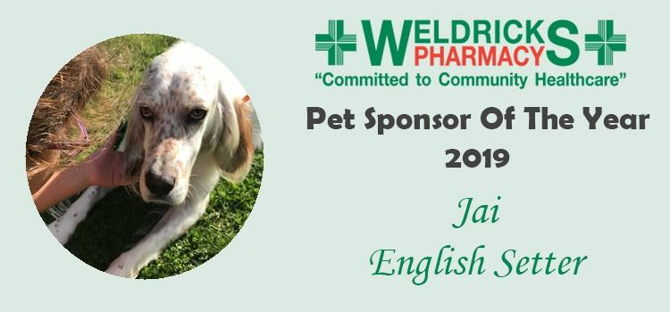 Pet Sponsor 2019: Jai's Story
