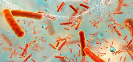 Toxic Shock Syndrome: Symptoms, Treatments & Causes