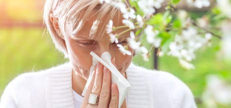 Hayfever Symptoms and Treatments