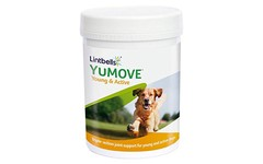 YuMove Young & Active Dog Tablets Pack of 240
